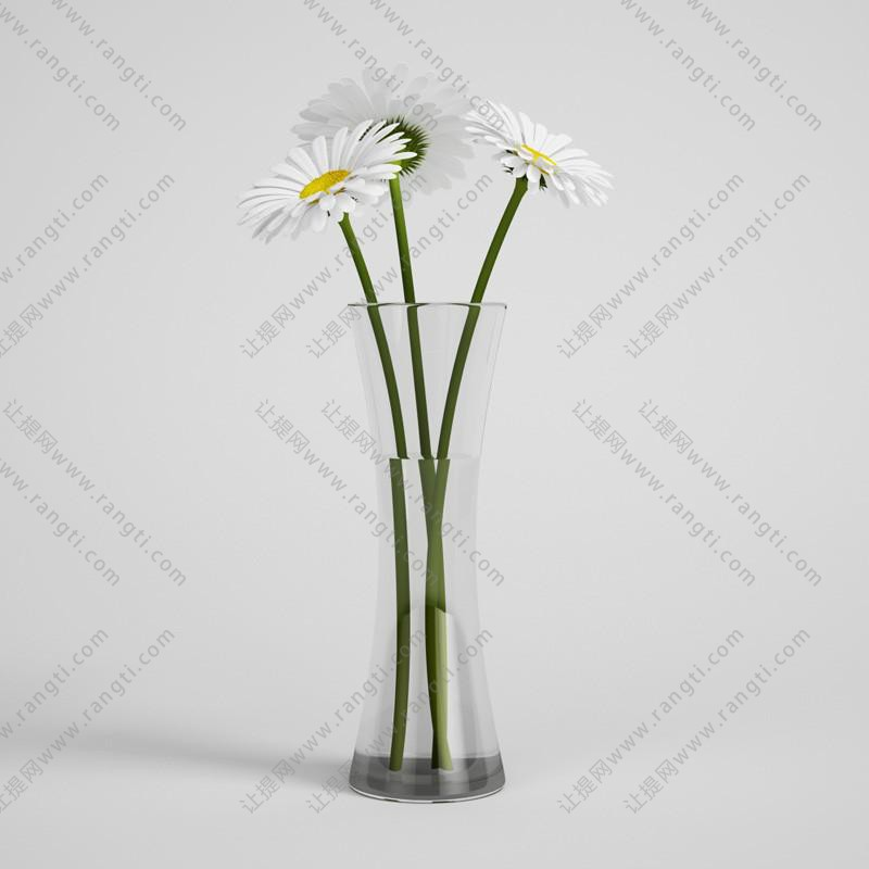 白色菊花、带水玻璃花瓶花卉3D模型