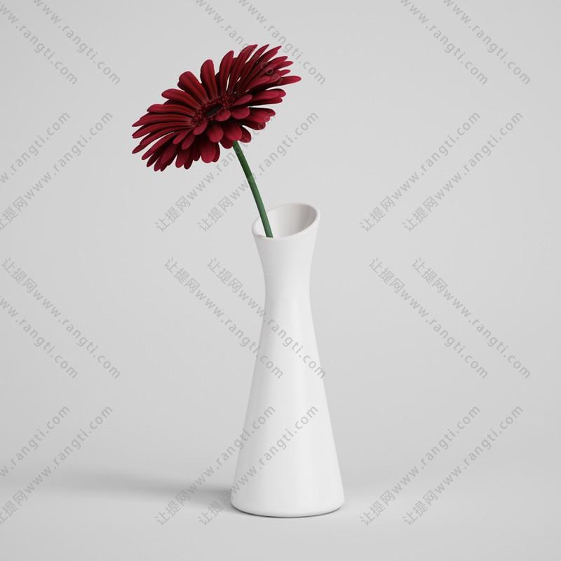 非洲菊、菊花、花瓶植物3D模型