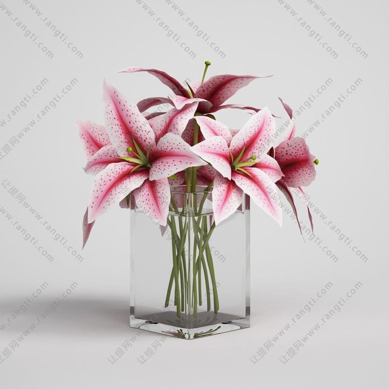 粉红百合花、有水玻璃花瓶花卉3D模型