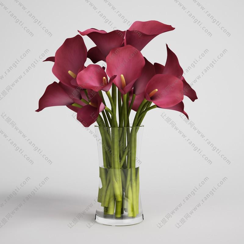 红色马蹄莲花瓶花卉3D模型