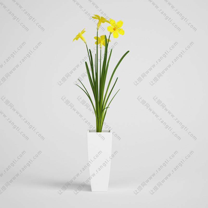 五瓣小黄花、盆栽花卉3D模型